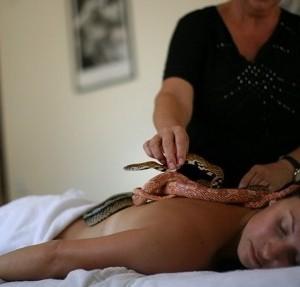 masaje exotico con serpientes